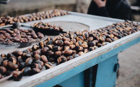 Cocoa 和 Cacao 有什么不同?
