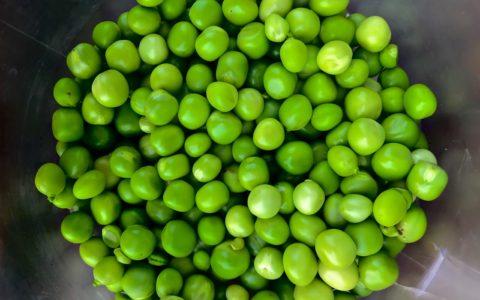 绿豌豆是增肥的还是减肥的食物?