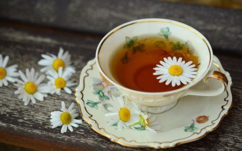 木槿茶(芙蓉茶)的5个惊人的健康益处和副作用