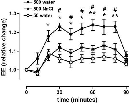 水如何促进新陈代谢