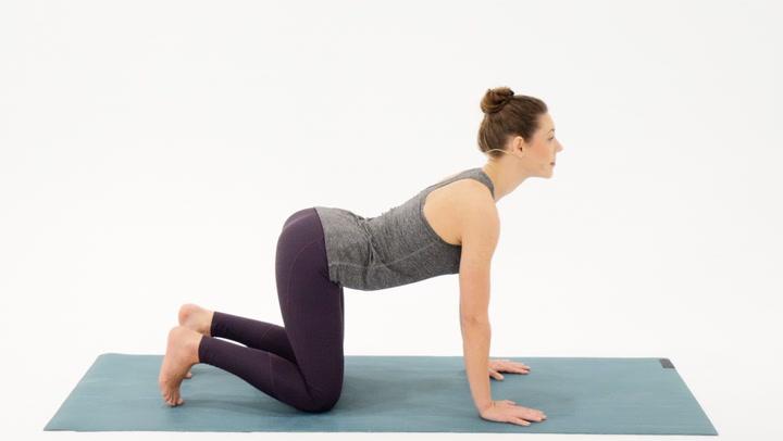 猫牛式的瑜伽动作示范