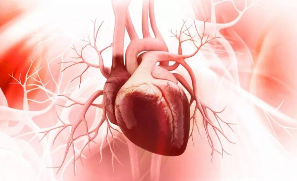 心血管疾病常用的6种检查方法
