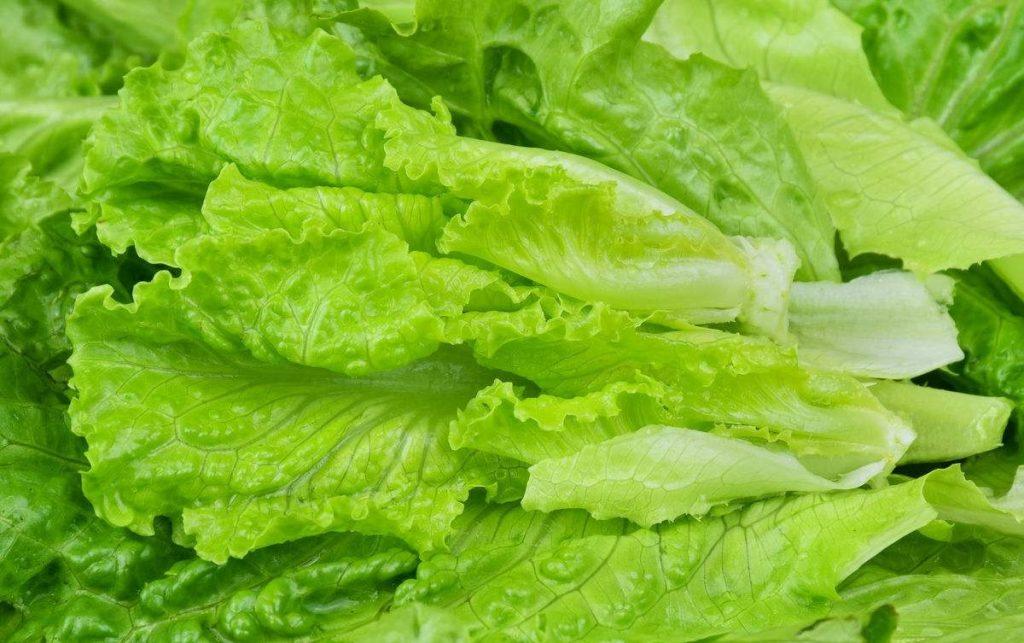"""种能帮助你赶跑血栓得蔬菜,血管不好的人可以常吃"""""""